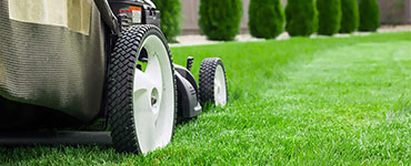 year round lawn care