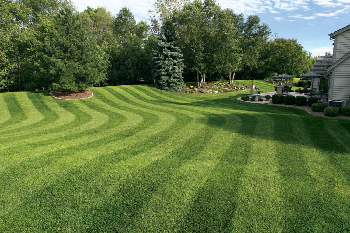 lawn care Carter Bros